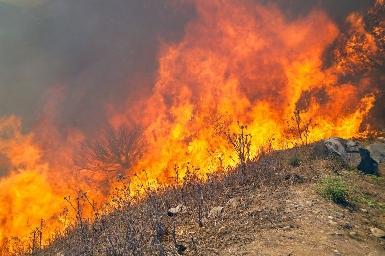 Foto de Los brigadistas estudiarán en Villafranca el incendio mortal de Oencia de 2000