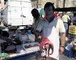 Foto de Villafranca acogió la Feria de Santiago