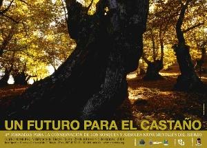 Foto de 4ª Jornadas para la consevación de los bosques y árboles monumentales