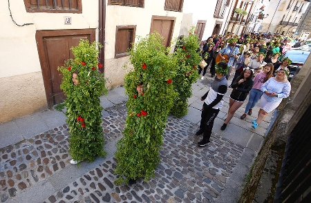 Foto de Villafranca saca os Maios para
